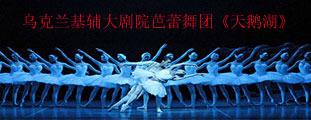 2018第3届人民大会堂·北京新年芭蕾——乌克兰基辅大剧院芭蕾舞团《天鹅湖》