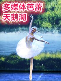 俄罗斯芭蕾舞剧院经典芭蕾舞剧多媒体《天鹅湖》