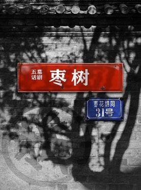 中国国家话剧院演出 五幕京味儿话剧《枣树》