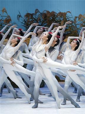 2018国家大剧院舞蹈节:中国国家芭蕾舞团《鹤魂》
