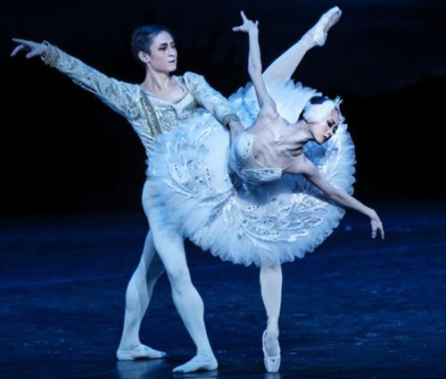 中央芭蕾舞团《天鹅湖》吻星网床六性感戏大全图片