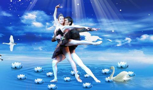 中央芭蕾舞团 《天鹅湖》/中央芭蕾舞团《天鹅湖》